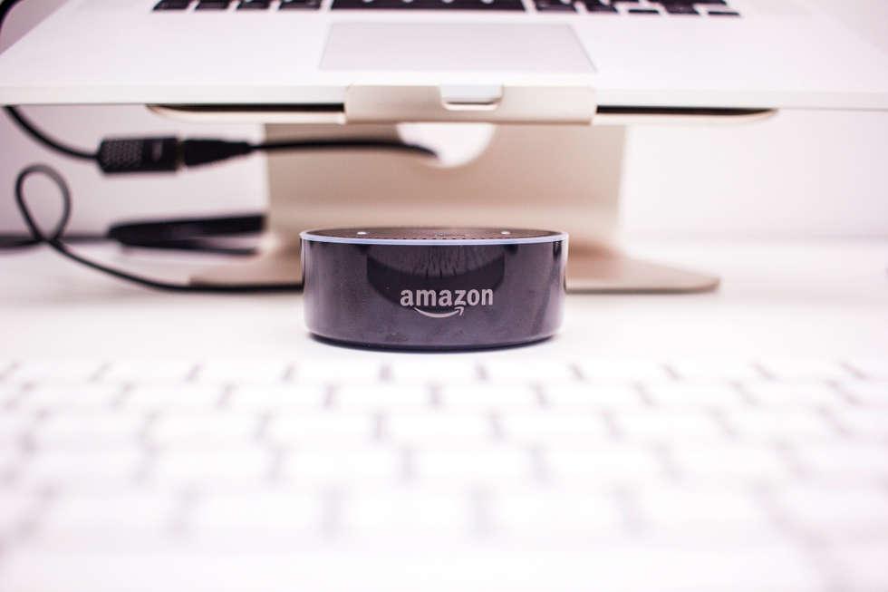 Amazon dot voice search