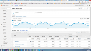 A Few Easy Tips For Organic Search Traffic in Google Analytics