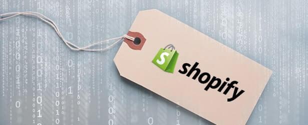 Shopify Preispläne: Welcher Shopify-Preisplan ist für deinen Shop am besten geeignet?