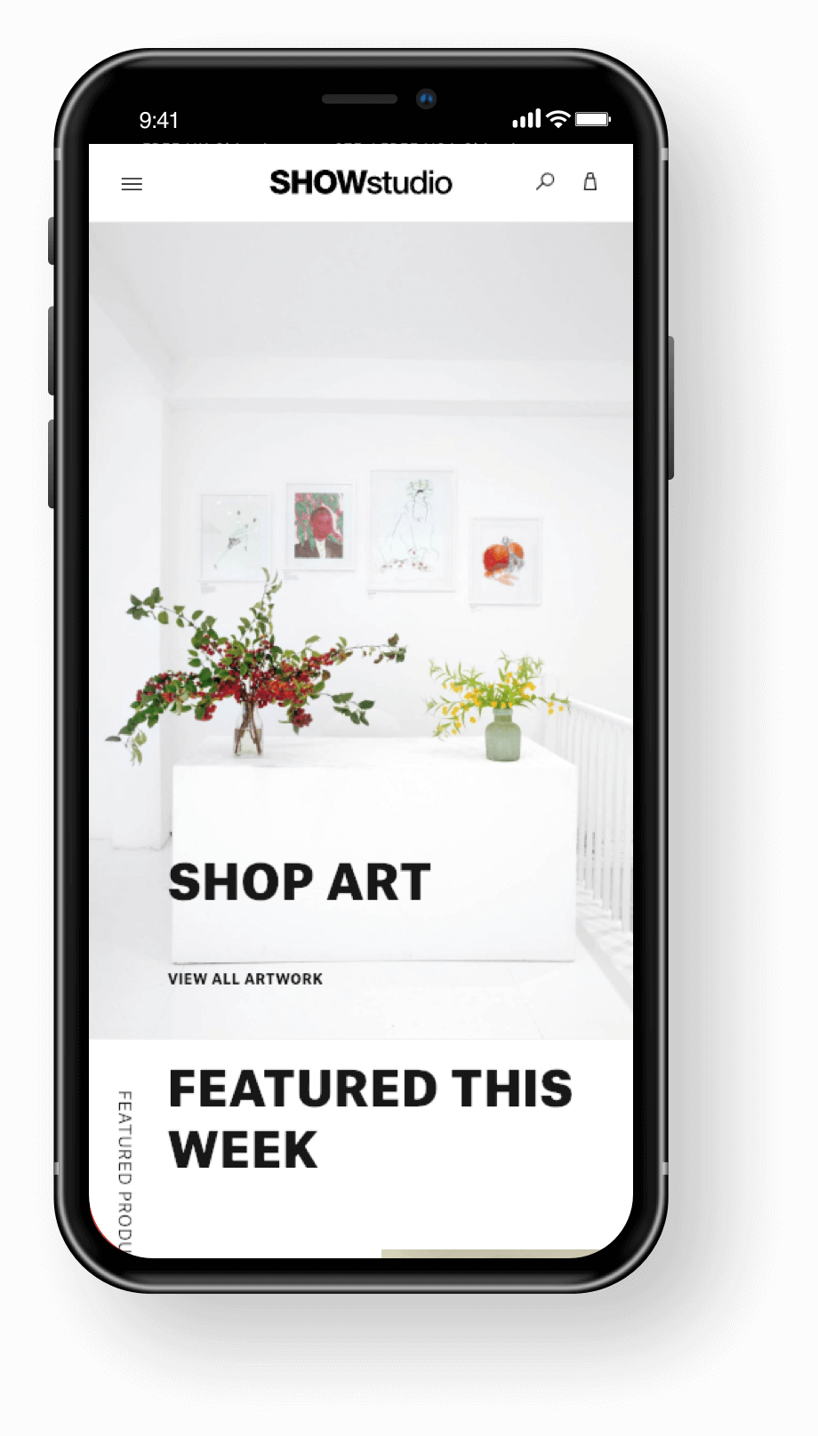 SHOWstudio Mobile Shop Art